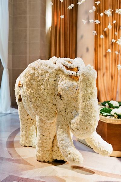 elephant2.low_
